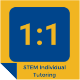 stem-individual-program-icon